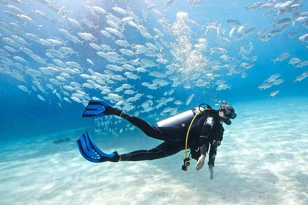 Into the Deep Blue: Getting the Full Diving in Phuket Experience