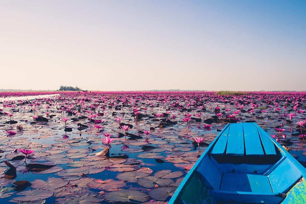How to Get to Udon Thani from Bangkok: The North's Underrated Gem