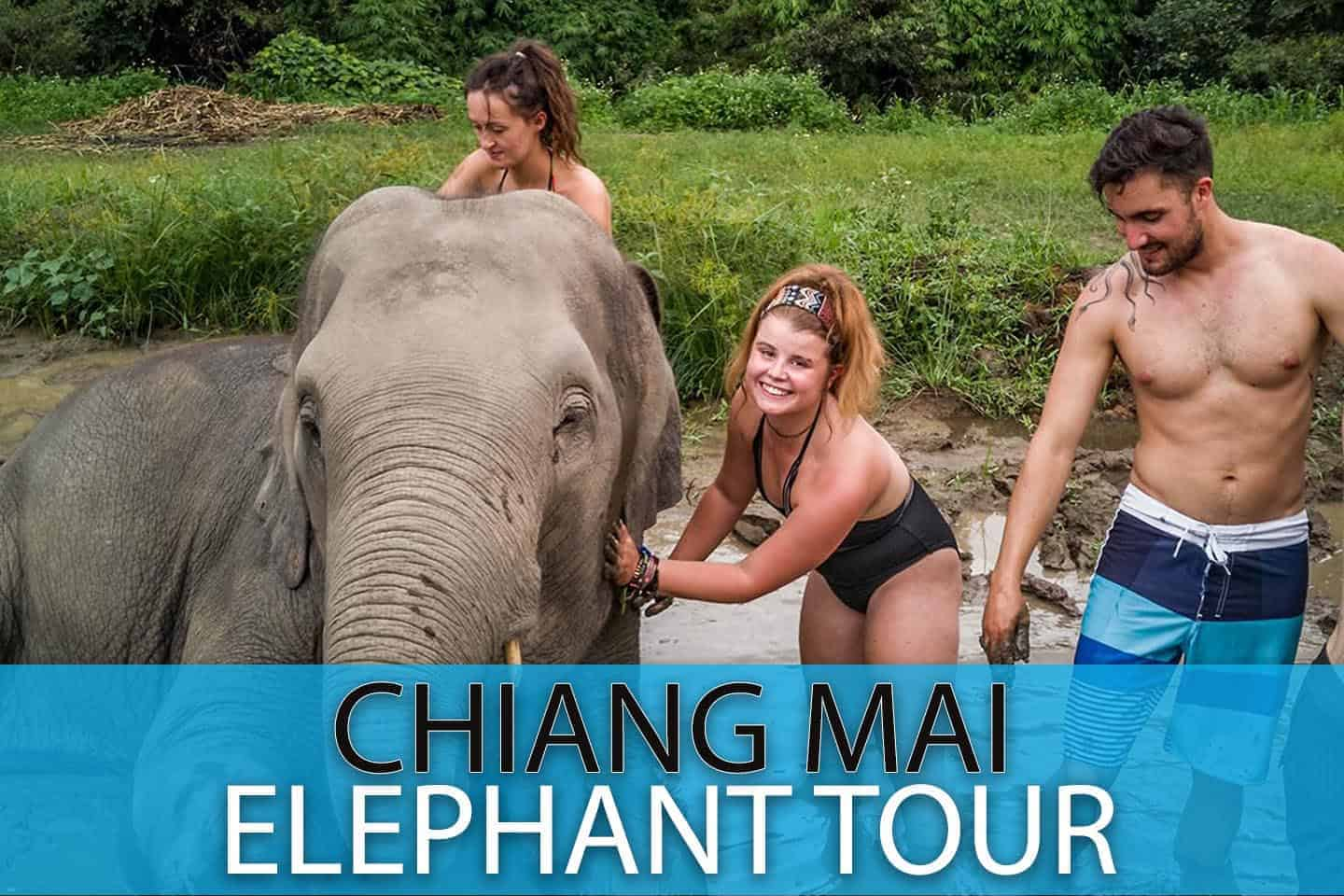 Chaing Mai Elephant Sanctuary Full Day Tour