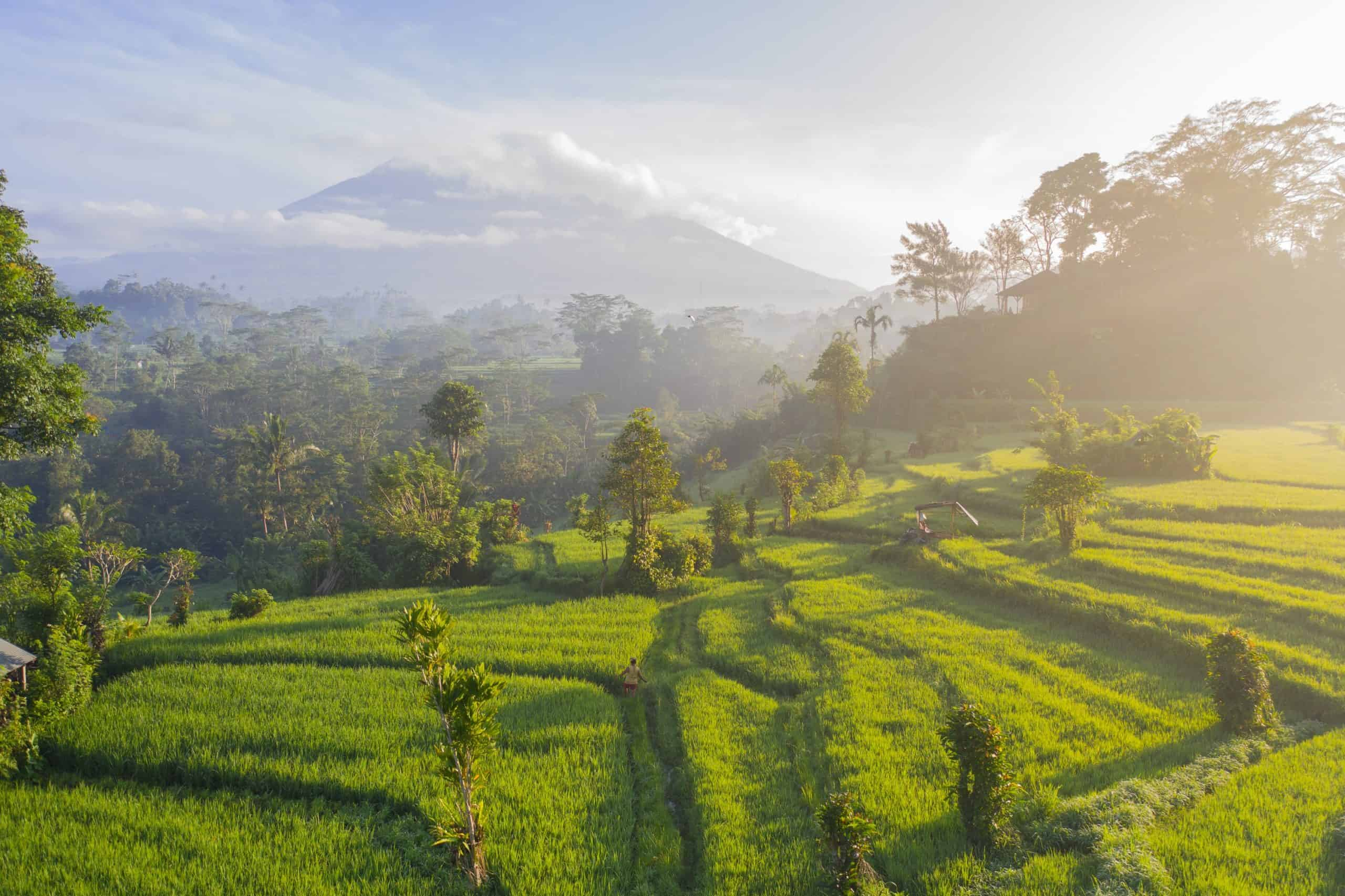 The Top 10 Things To Do in Bali: World Class Backpacking