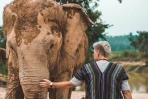 ethical elephant sanctuaries in Phuket
